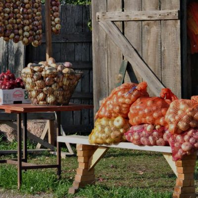 Estonia's Onion Route & The Old Believers