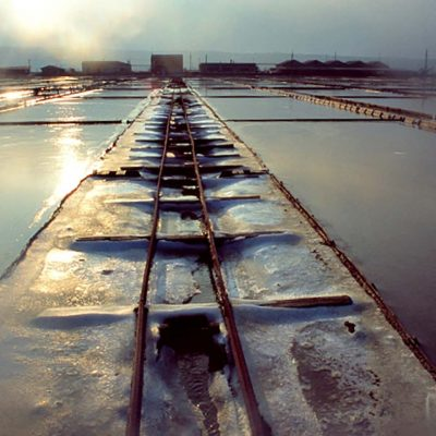 Piran Salt: Slovenia's Adriatic Sea Salt Harvesting