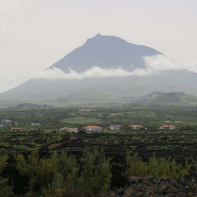 Cultural Connections – Pico Island