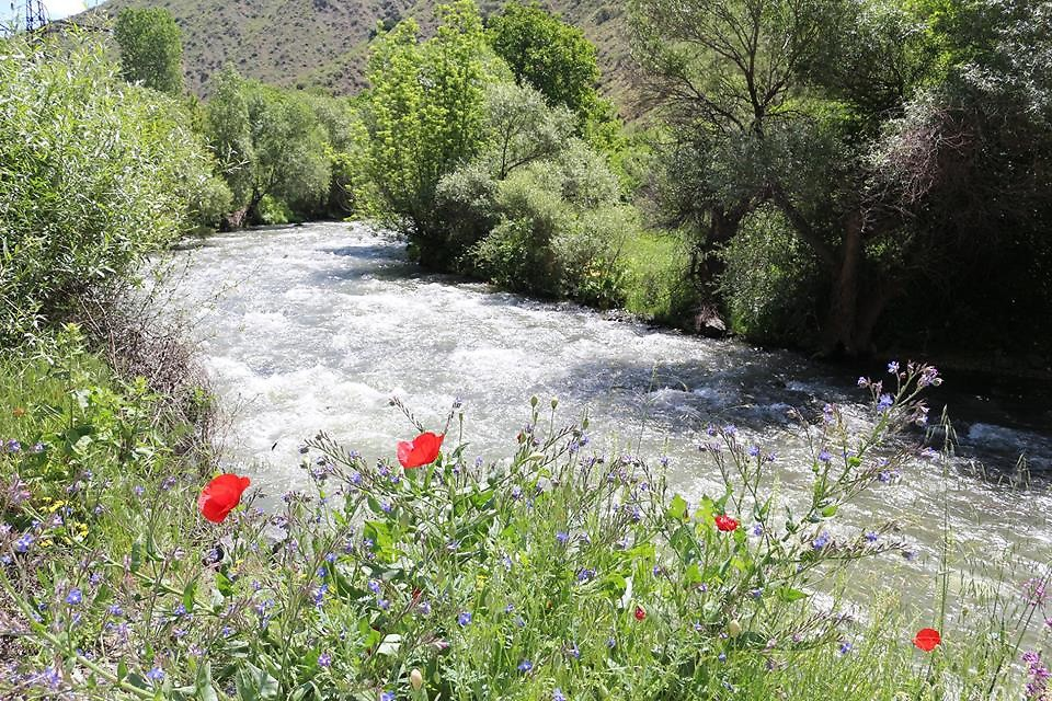 Armenian culture | Garni Gorge during spring time, the grandeur is enhanced by wildflowers.