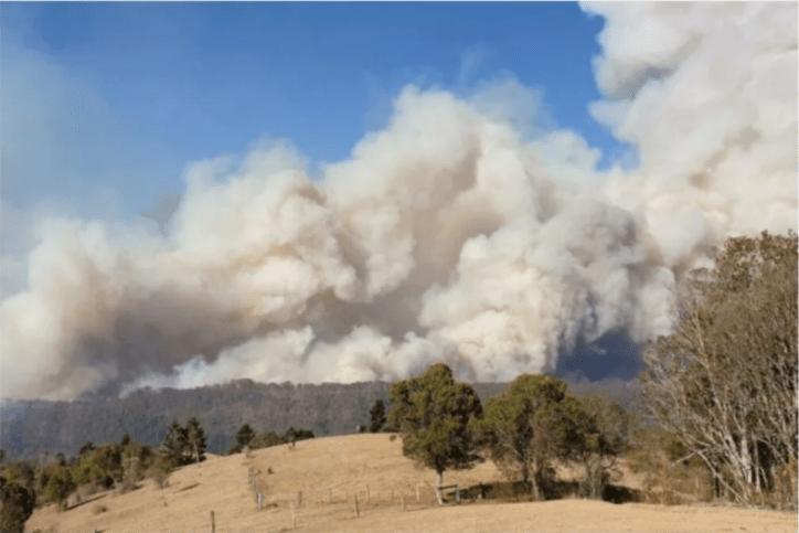 A Bushfire south of Canungra approaching Lamington National Park on Friday, September 6. Photo: ABC News: David Higgins