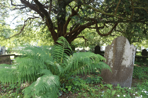 A worn and washed out gravestone at St. Michael's, Betws-y-Coed.
